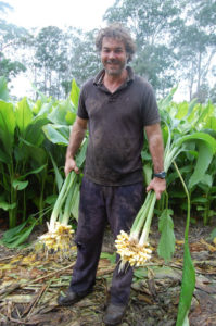 Heyden Lane with turmeric harvest in Nymboida.