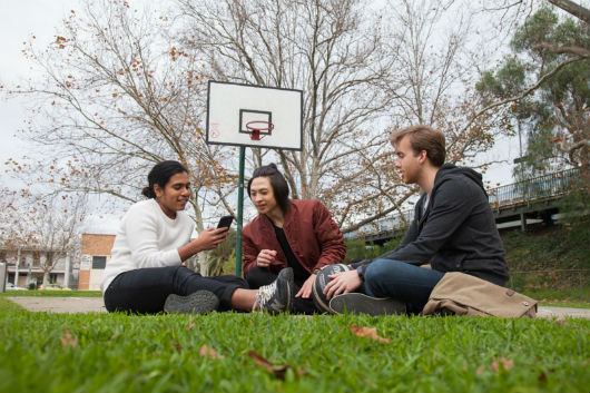 Three students sitting on the lawn on a school campus in front of a basketball court.